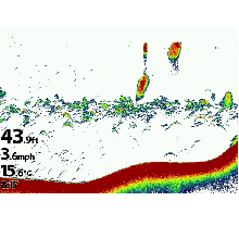 humminbird sonar
