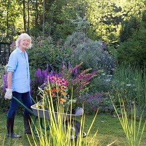 Bin Im Garten Ein Jahr Wachsen Und Wachsen Lassen Mit Vielen