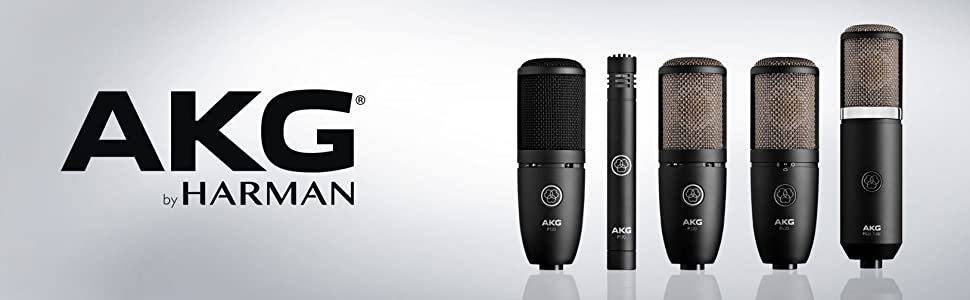 AKG P170 High-Performance Microphone
