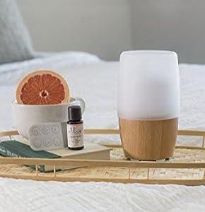 Homedics ellia diffusore di aromi e oli essenzial ultrasonico vetro e legno umidit lenitiva - Aria secca in casa ...
