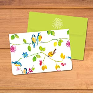 Abbey Press Snail/'s Pace Bird Note Cards Set of 6 Note Cards in One Design