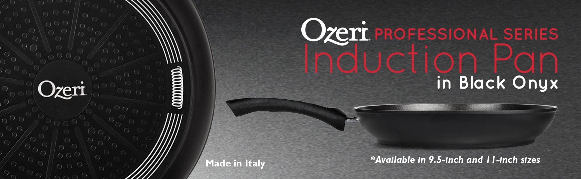 Amazon Com Ozeri Professional Series Induction Fry Pan In