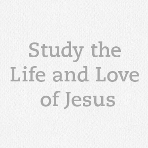 women's small group study on jesus, jesus bible study, study on the gospels, women study gospel