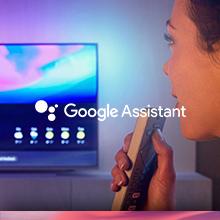 google assistant ses sesle kontrol