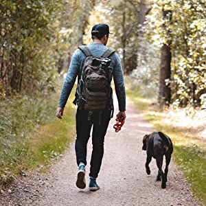 A man walking down the track with his dog