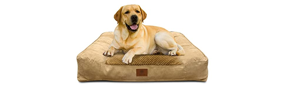 akc, sofa bed, couch bed, memory foam, bolster, pet bed