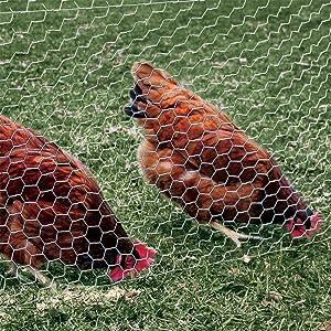 Amazon.com : YARDGARD 308476B 4 Foot X 50 Foot 2 Inch Mesh Poultry ...