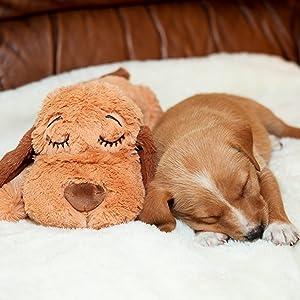 Amazon Com Smartpetlove Snuggle Puppy Behavioral Aid Toy Brown