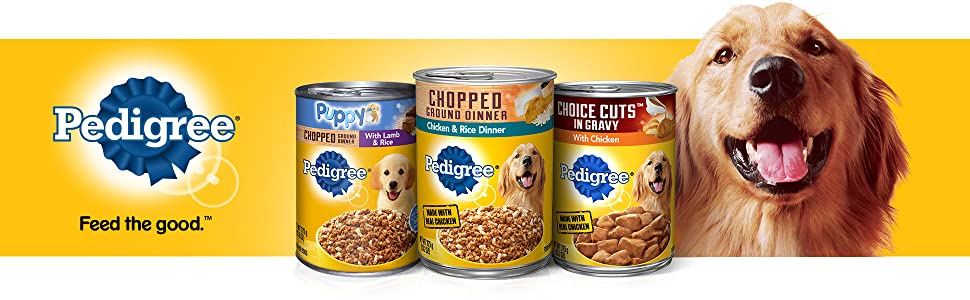 Pedigree Wet Dog Food, Feed the Good, Gravy, Dog, Food, Cuts, Fillets, Tender, Juicy, Moist, Soft
