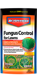 Fungus Control for Lawns