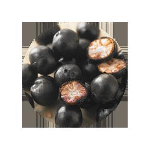 acai fruit oil