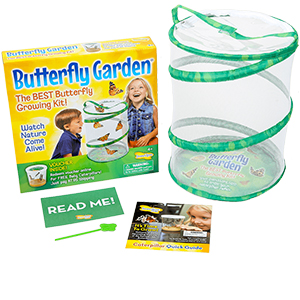 Insect Lore Butterfly Garden with Voucher