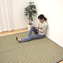 ルイス ブラウン 茶 茶色 和柄 和モダン 和室 使用 イメージ PP ラグ 花ござ 上敷き カーペット い草風 畳 床 保護 汚れ きず 隠す 和室 洋室 模様替え 子供 ペット 水洗い可