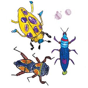 bugs, art