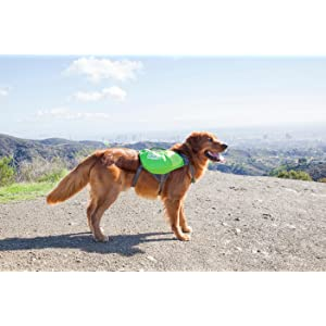 backpack for dogs, hiking gear for dogs