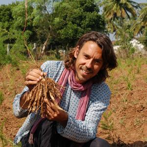 pukka herbs organic herbal wellbeing teas supplements sustainable fairly traded hormone balance
