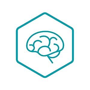 Brain & Immune System