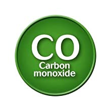 Carbon monoxide is almost eliminated from your body