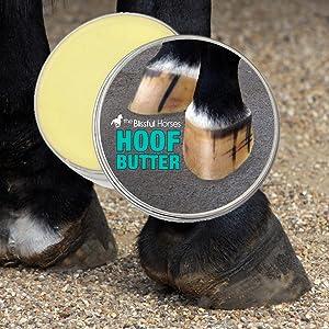 dry horse hooves