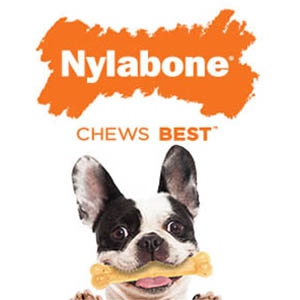 nylabone chews best