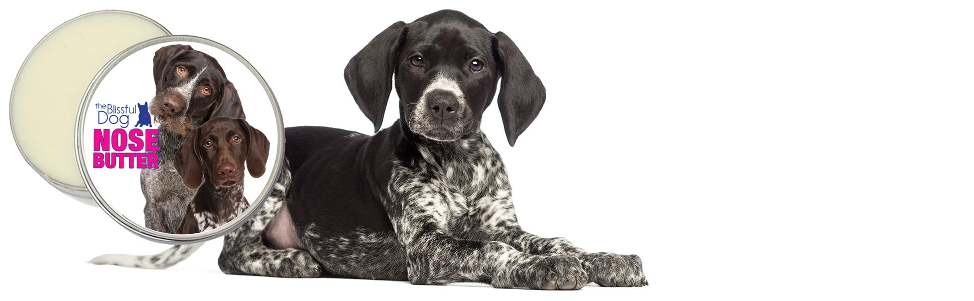 Amazon.com : The Blissful Dog German Shorthaired Pointer Unscented ...