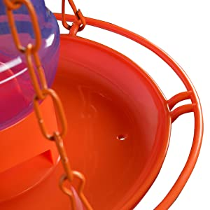 jelly feeder, oriole feeder, circular perch