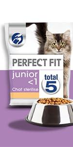 Croquettes; chaton; chat junior; nourriture pour chat