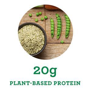 Organic Plant-Based Protein Chia Pea Quinoa Hemp