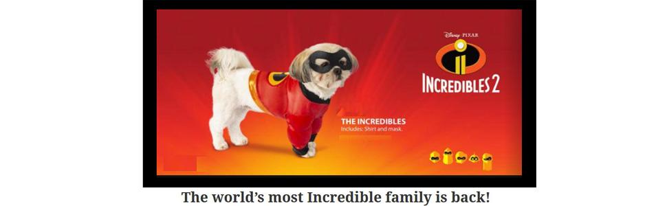 eadd39f45 Amazon.com : Rubie's Disney: Incredibles 2 Pet Costume Shirt and ...