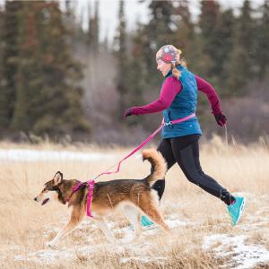 RC Pets Momentum Harness