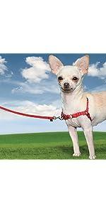 犬 引っ張り防止 イージーウォーク ハーネス 胴輪