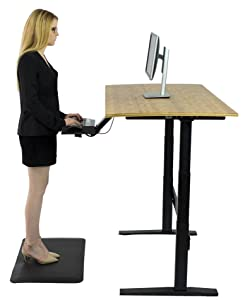 Amazoncom RISE UP Electric Adjustable Height Standing Desk