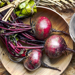 Grow Food For Free image 3