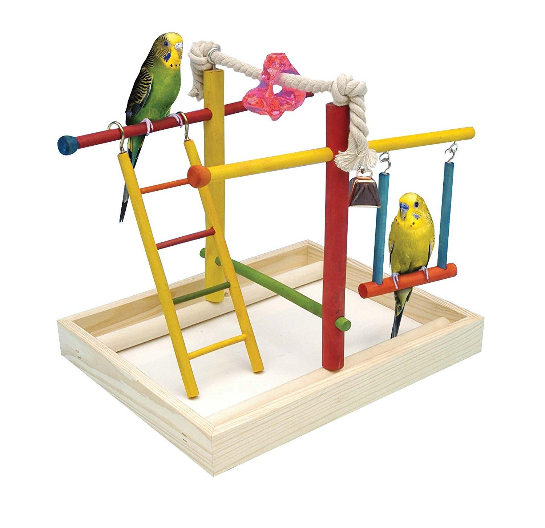 Toys For Activity : Amazon pen plax bird activity center large pet