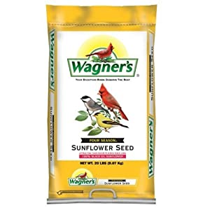 bird food, bird seed, wagners, black oil sunflower seed, sunflower seed