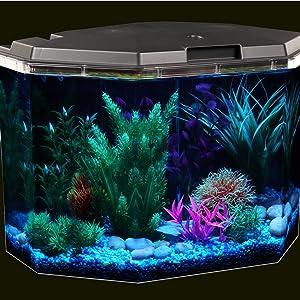 Semi-Hex Aqua Culture 6.5-Gallon Aquarium Starter Kit with LED Lighting