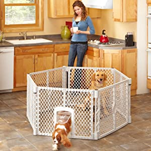 6-panel play space for dogs