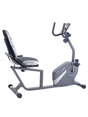 Amazon.com : Sunny Health & Fitness Recumbent Bike - SF-RB4876 ...