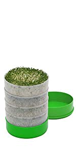 Deluxe Kitchen Crop 4-Tray Seed Sprouter by VICTORIO VKP1200