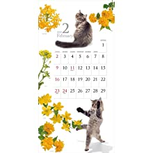 カレンダー2020 猫と花のカレンダー