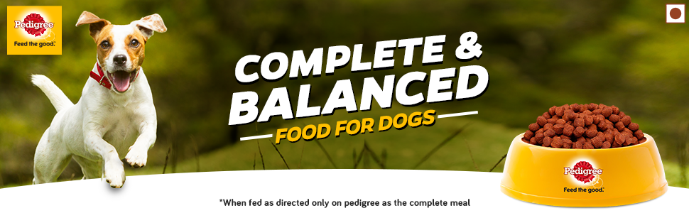 Balanced food for dogs