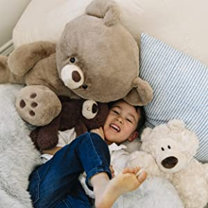 fuzzy modern classic teddy bear plush stuffed animal chocolate brown grey gray gund stuffies