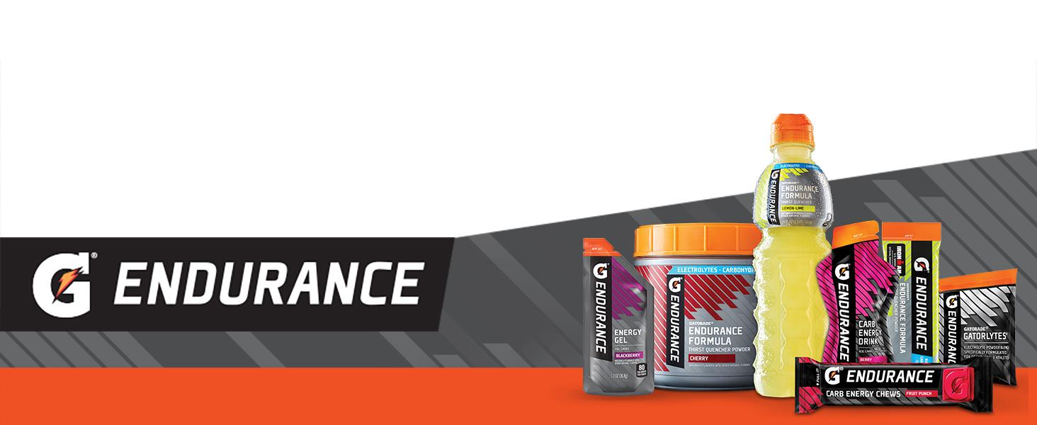 Amazon.com : Gatorade Endurance Powder With Electrolytes, Watermelon, 12  Count : Health & Household