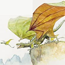 wings,dragons,flying creatures,dragon,mythical creature,fantasy creature,flying,flying beast