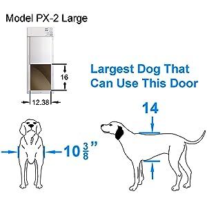 dog door size