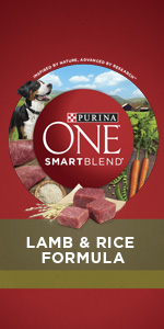 Purina ONE SmartBlend Natural Lamb & Rice Formula adult dry dog food