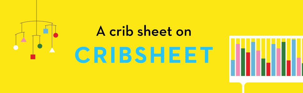 Crib Sheet, Emily Oster