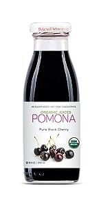 Pomona Black Cherry