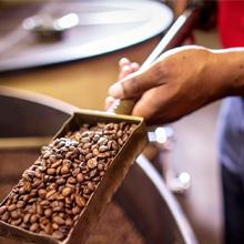 Coffee Roasting Technique
