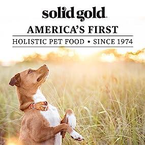 natural, holistic, grain free, dog food, solid gold